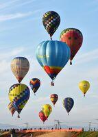 色とりどりの気球が青空を彩るバルーンフェスタ。今年は期間を短縮して開催する(2019年の大会から)