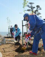 東京五輪の聖火リレーを記念した桜の苗木の植樹式=藤津郡太良町の海中鳥居前