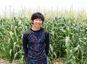 松林さんのスイートコーン畑。20日すぎまで収穫が続きます
