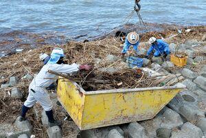 消波ブロックに流れ着いたアシや木のくずなどを箱舟に集める作業員ら=佐賀市の川副海岸