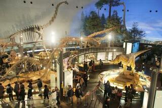 恐竜博物館をリニューアル、福井