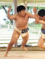 相撲無差別級1回戦で積極的に攻める多久の吉村陸=唐津市体育の森公園