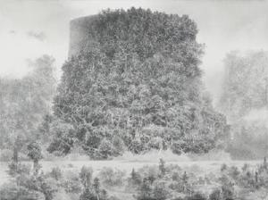 「Untitled」(2014年、紙にペン、インク、46×61㌢、作家蔵(C)IKEDA Manabu