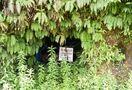 <戦後75年さが>忘れられゆく防空壕 佐賀県内に約90カ…