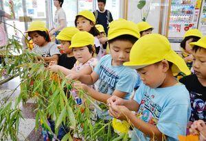 飾り付ける町田保育園の園児たち=JR唐津駅