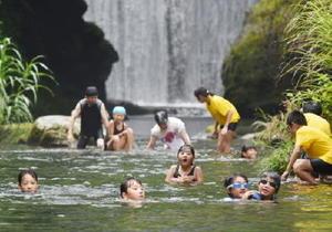 泳いだり、水中の生物を観察して楽しむ子どもたち=鹿島市の中川上流