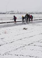 雪が積もった通学路を登校する子どもたち=11日午前7時38分、佐賀市久保田町