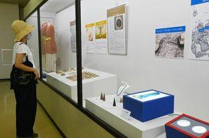 弥生時代の装飾品などに見入る来場者=吉野ケ里歴史公園