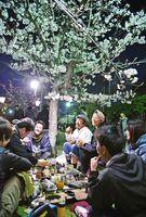 桜の下で花見を楽しむ人たち=30日夜、佐賀市の神野公園