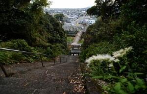 「男はつらいよ」のシリーズで定番となっているラストの正月のシーンは、急な階段が続く須賀神社で撮影された=小城市小城町