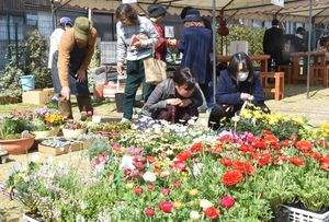 会場に並んだ花の苗木を見る来場者=佐賀市の街なか緑地憩いの場
