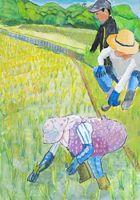 全国農協中央会会長賞に選ばれた松永さんの作品「家族で田植え」