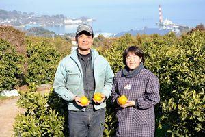 ミカン栽培の労力分散と長期安定出荷に取り組んでいる山田公寿さん、静子さん夫妻=藤津郡太良町