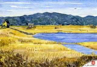 「巨勢川調整池(東名遺跡)」日本の原風景ほうふつ