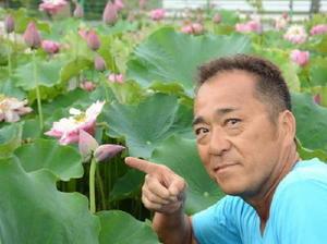 ハートの形のように見える2つのつぼみをつけたハスの花=神埼市千代田町姉のあらい花公園