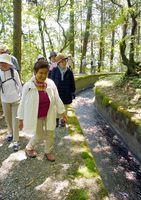 蛤水道沿いを散策する参加者=吉野ヶ里町の蛤岳