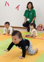 マイペースでゴールを目指す赤ちゃんたち=佐賀市新栄東の佐賀総合住宅展示場「イエス」