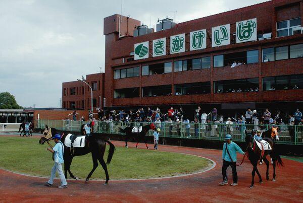 佐賀 競馬 開催 日程