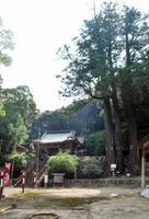 多久八幡神社と三本杉=多久市多久町
