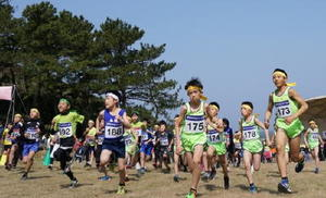 第26回波戸岬クロスカントリー大会 小学3、4年男女の部(1.4㌔)で一斉にスタートする選手たち