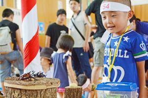 戦うカブト虫力士を応援する子どもたち=太良町B&G海洋センター体育館