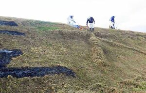 のり面に草を集めて文字をかたどる作業員=昨年11月末、佐賀市嘉瀬町の嘉瀬川