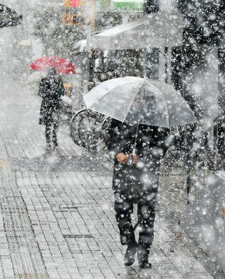 佐賀県内、平野部でも積雪 18日も雪警戒を