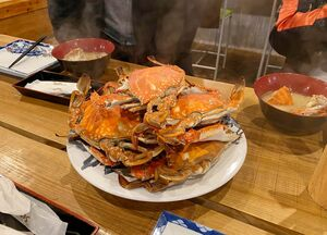 大盛りの竹崎ガニ=藤津郡太良町の「漁師の館」