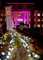 紫にライトアップされた佐賀県庁=佐賀市