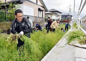 佐賀市河川清掃実態調査「実施日、…