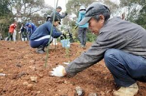 ブルーベリーの苗を植え付ける参加者ら=白石町の白岩果樹試験場