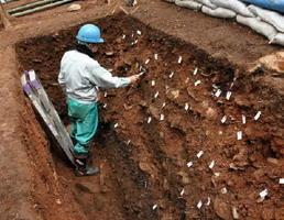 初期鍋島の陶片40点以上が見つかった物原=伊万里市大川内町