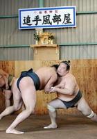 九州場所に向けて朝稽古に汗を流す旧春日山部屋の力士たち=佐賀市の佐嘉神社