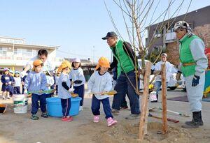 梅の若木に土を掛ける園児たち=佐賀市の城南保育園