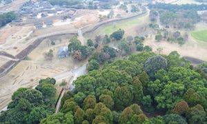 日吉神社がある雑木林(写真下)。吉野ケ里歴史公園の中心部に位置している。写真左奥は北内郭=1月、神埼郡吉野ヶ里町(ドローンで空撮)