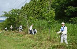 JR佐世保線の複線化に伴って伐採される桜の木の周りで、最後の草刈りをする北方町の人たち