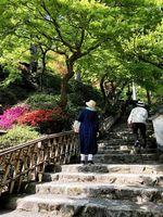 4月中旬時点では、つつじが五分咲きの「契園」=基山町園部