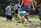 【動画】「浜の浦の棚田」で園児が田植え体験 玄海町