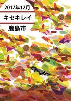 杵藤版 探鳥日記