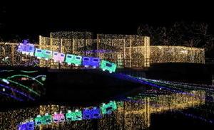 夜空に上る汽車の電飾=鳥栖市の中央公園