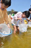 カサゴの稚魚を放流する園児たち=唐津市佐志浜町の佐志浜海浜公園