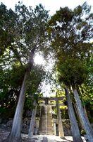 神辺全体を見下ろす高台に建てられた老松神社