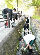 小城高剣道部が学校周辺の水路清掃