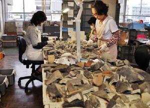 軒丸瓦の接合作業をする埋蔵文化財整理補助職員の女性たち