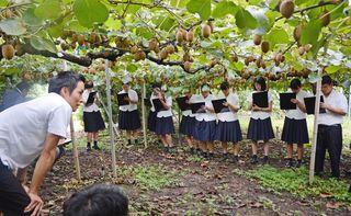 キウイ栽培や経営学ぶ 佐賀農業高生が課外授業
