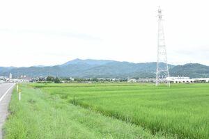 新しい病院の建設予定地に選定された多久市東多久町別府。左は県道多久江北線