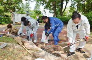 側溝のふたを開け、たまった土砂をかき出す清掃活動の参加者=佐賀市の県立博物館、美術館周辺