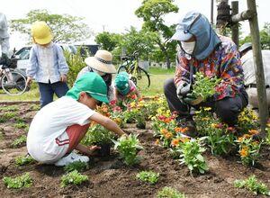 住民ボランティアに教わりながら、花を植える園児=佐賀市の本庄公園