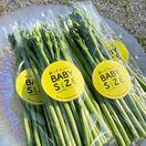 〈トピックス〉佐賀空港で農産物や加工品販売、8月8日に