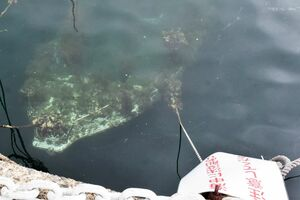 沈没したまま放置された小型船。潮が引くと水面近くまで浮くこともある=唐津市湊町の湊浜漁港
